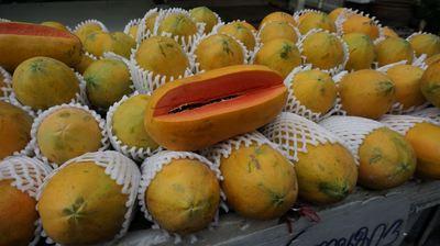 fruits-201502-3.jpg