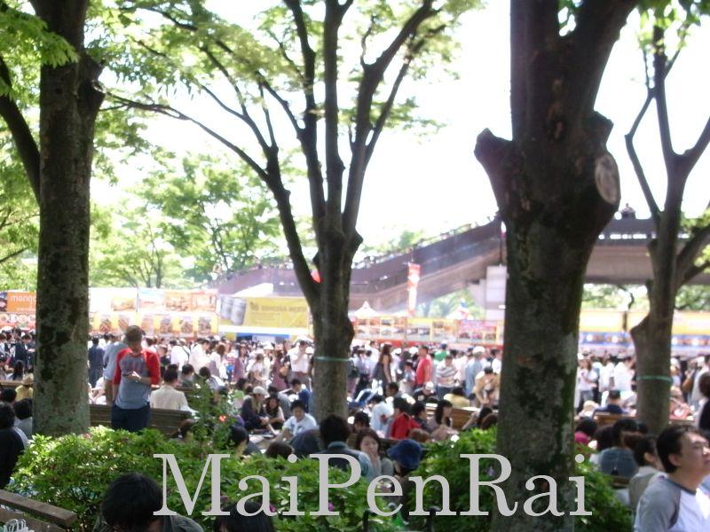 http://blog.maipenrai.info/photo_lib/p2010/thaifes2010_3.jpg